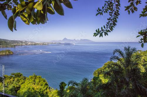 Staande foto Tropical strand タヒチ島