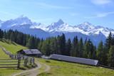 Blick von der Wiesener Alp auf Bergüner Stöcke - 175708265
