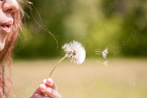 Fotobehang Paardebloemen Blows away the dandelion