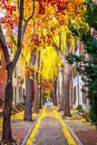 Philadelphia Autumn Streets - 175719634