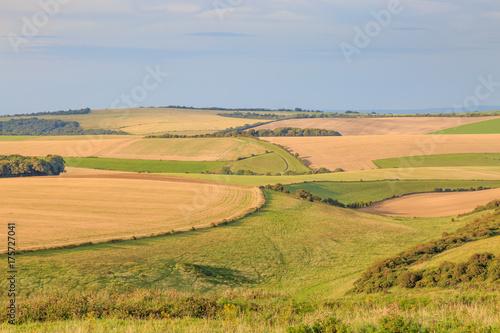 In de dag Blauwe hemel Late Summer Landscape