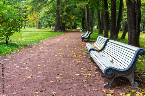 Tuinposter Herfst white benches on an empty avenue of autumn park