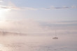 Morning mist over lake with sailboat - 5