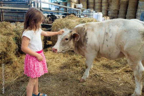 rencontre à la ferme