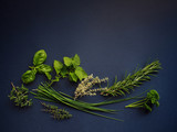 Various fresh green herbs on blue background. Mint, parsley, oregano, basil, thyme, chive, rosemary. - 175747640