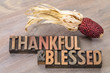 thankful and blessed - Thanksgiving theme