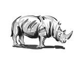 Vector line sketch rhino - 175766296