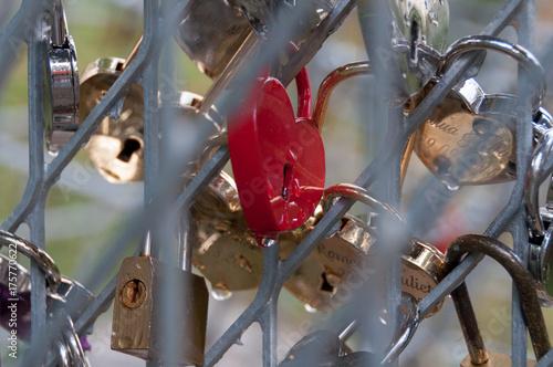 Foto op Plexiglas Kiev Shiny marriage locks after a rain. Good backround image for love, commitment, marriage.