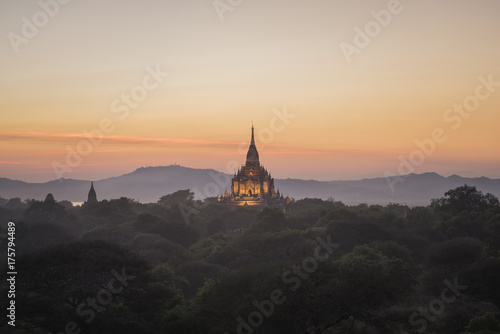 Great pagoda and forest foreground. Poster