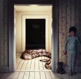 Snake in the room - 175797875
