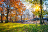 Central park in New York City at sunny autumn day, USA - 175819871
