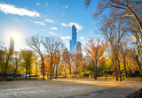 Central park in New York City at sunny autumn day, USA - 175819897