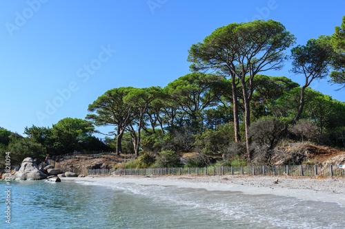 Staande foto Tropical strand Corsica - Palombaggia Beach