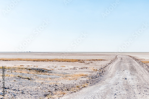 Fotobehang Lichtblauw Road to the viewpoint on the Etosha Pan