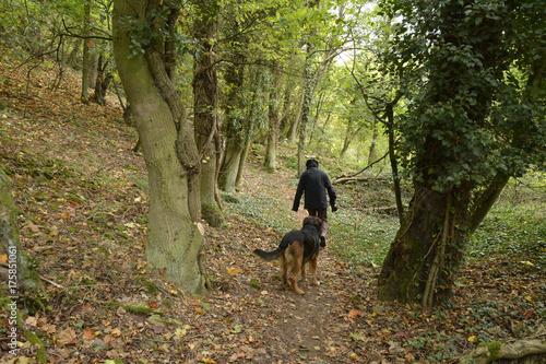Keuken foto achterwand Weg in bos frau und hund gehen auf einem pfad am waldrand