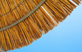 Reed Sun Umbrella and Sky - 175852618