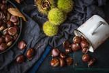 castagne in tazza bianca e ricci appena raccolti sparsi su base rustica di legno verde - 175855688