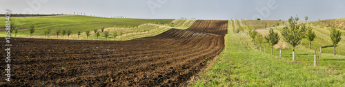 Moravian fields, Moravia, Czech Republic, around the village Kyjov - big panorama - 175888407