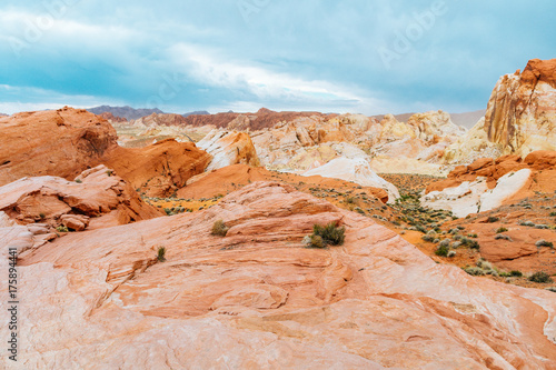 Foto op Aluminium Pool amazing sandstone shapes at valley of fire national park, nevada