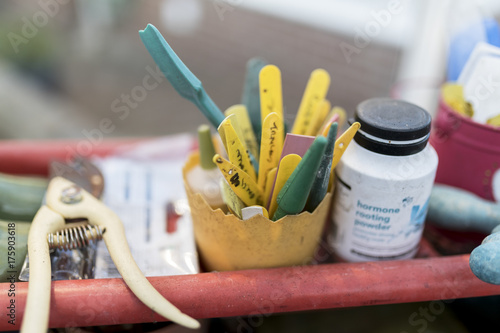 Plant labels, secateurs and other equipment for gardening in an English green house or potting shed