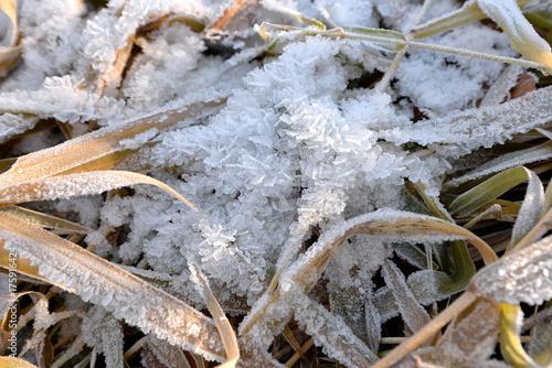 Keuken foto achterwand Donkergrijs Landschaft im Herbst mit Raureif und Frost