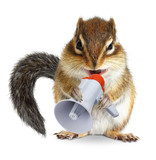 Funny animal chipmunk shouting into megaphone - 175924465