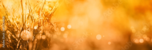 Papiers peints Photos panoramiques Radiant autumn background with bokeh
