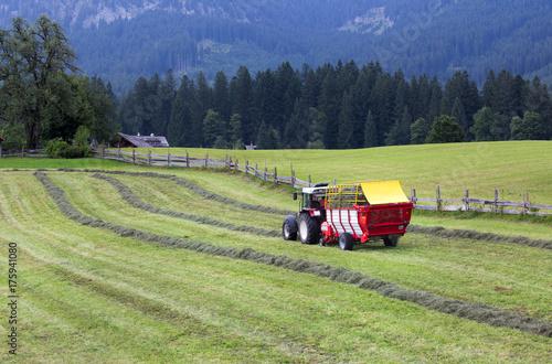 Fotobehang Trekker Tractor collecting hay on meadow