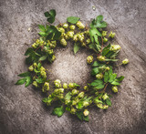 Wreath of Green hop twigs , ingredients for beer Brewing  on gray background, top view - 175945498