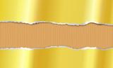 Torn paper, corrugated cardboard - 175947227