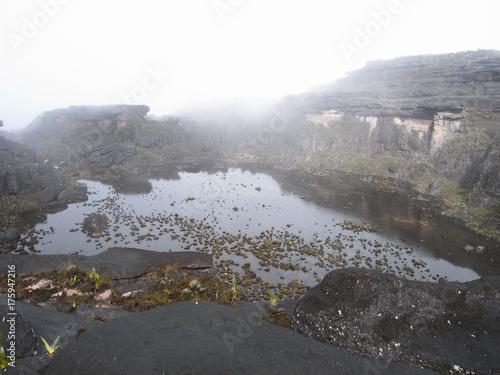 pond at the summit of Mount Roraima, Guiana Shield, Venezuela Poster