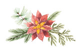 Watercolor Christmas vector bouquet with flower poinsettias and fir branches. - 175958463