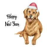 Watercolor vector retriever in Santa Claus hat isolated on white background. - 175958609