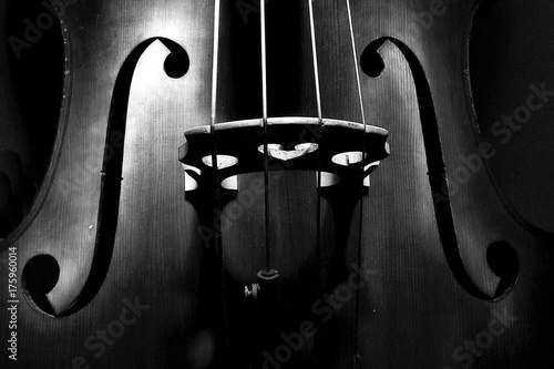 An italian double bass - 175960014