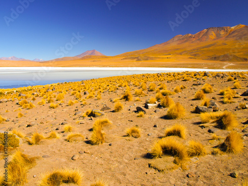 Poster Honing Desolate desert and mountainous landscape of southern Altiplano with lagoon, Andes, Bolivia.