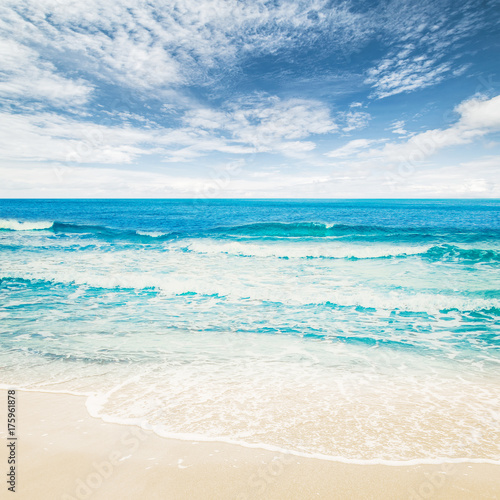 Staande foto Tropical strand Tropical beach ocean
