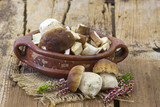 fresh mushrooms (boletus) in a bowl