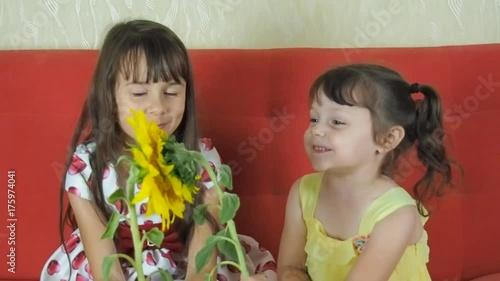 Children with sunflower flowers. Little girls are holding a sunflower.