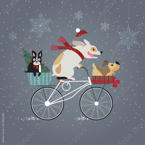 Three cute dogs on bicycle going to holiday party. Happy new year concept. Merry Christmas. Holidays greeting card.