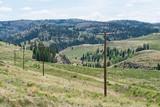 Telegraph poles - 176007283