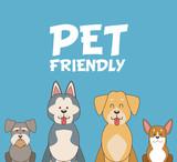 Pet friendly cartoon icon vector illustration graphic design