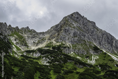 Foto op Aluminium Bleke violet High mountain in Austrian Alps, Summer season