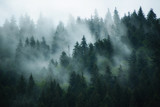 Misty landscape with fir forest in hipster vintage retro style - 176015643