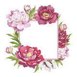 Frame with  peonies. Hand draw watercolor illustration. - 176025835