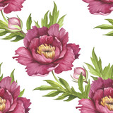 Seamless pattern with peonies. Hand draw watercolor illustration. - 176025899