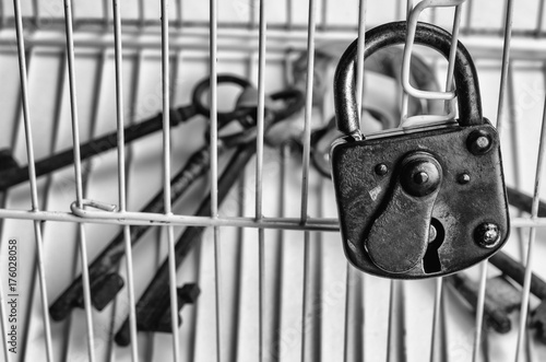 Keys locked in a cage Poster