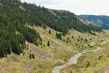 Creek - 176028446