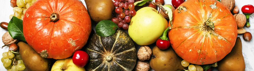 Autumn food background with pumpkins, vegetables, fruits and nuts, thanksgiving concept, banner, top view
