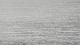 水面の揺らぎ - 176031849