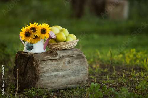 Sticker yellow apples in a handmade basket next to yellow flowers during sunset